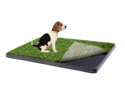 Indoor Dog Potty – A Convenient Housebreaking Solution