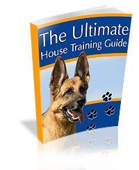 best selling dog house training guide